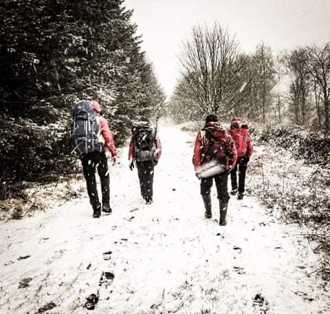 winter-search